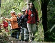 Full Day Gaya Trekking & Sapi Island Trip